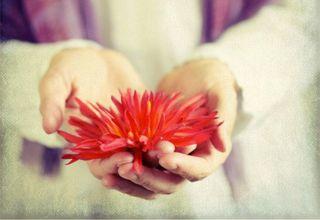 Flower-hands