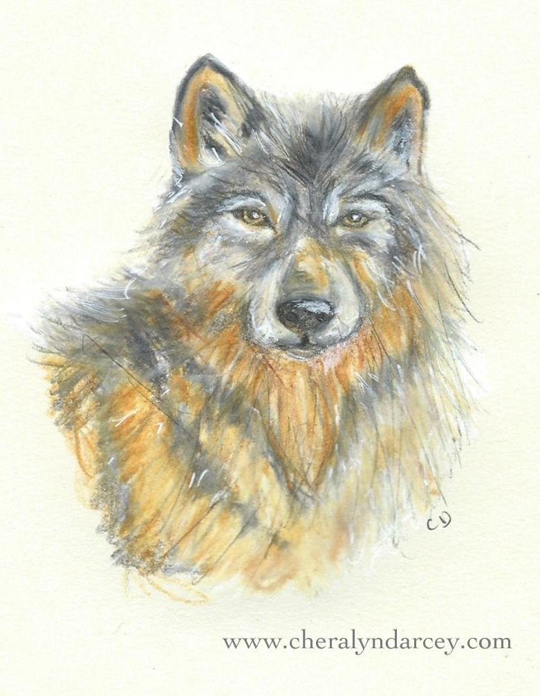 Wolfdarcey