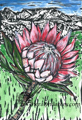 FLOWER protea web