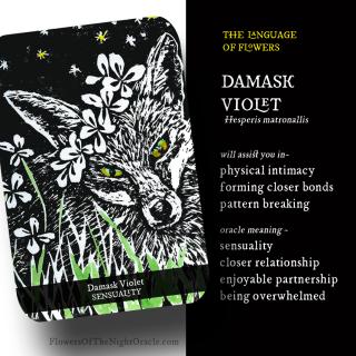 Damask violet ecard