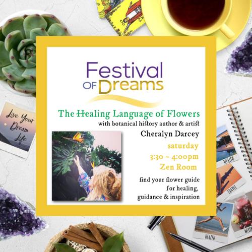 Festival of dreams square workshop