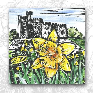 FScope Daffodil
