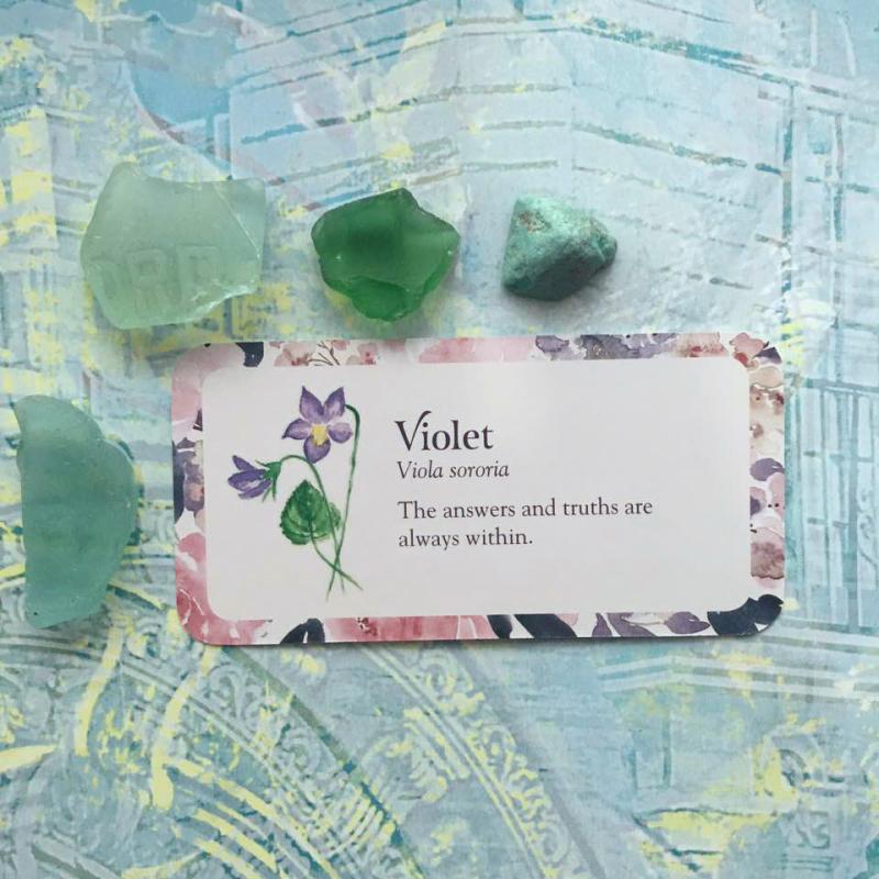 Violet webcard
