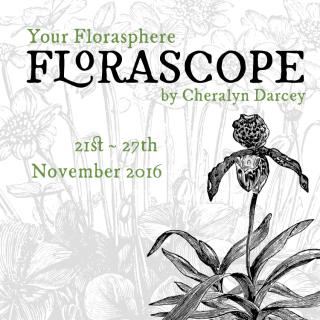 Florascope 1