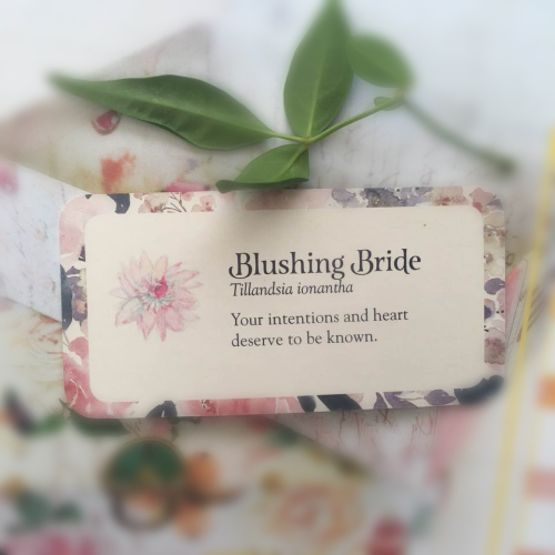 Webcards blushing bride