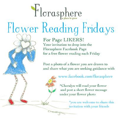 Flower reading FB