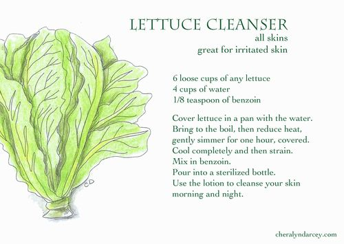 Lettuce cleanser