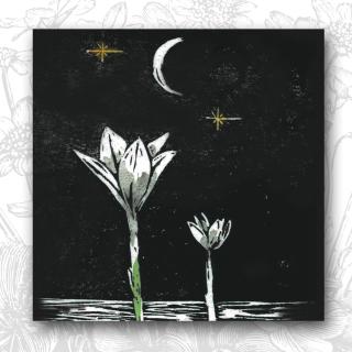 FScope Rain Lily