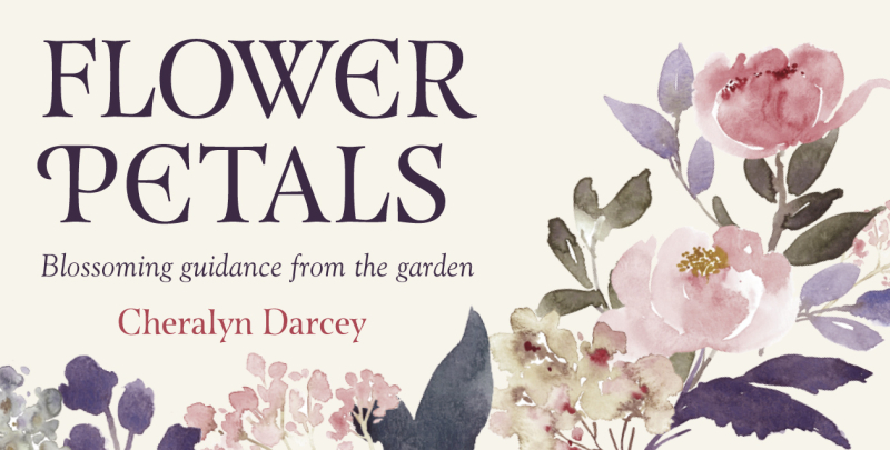 Flower Petals box 3