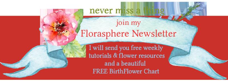 Newsletter ad banner 2