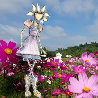 Cosmos flora webcard 2