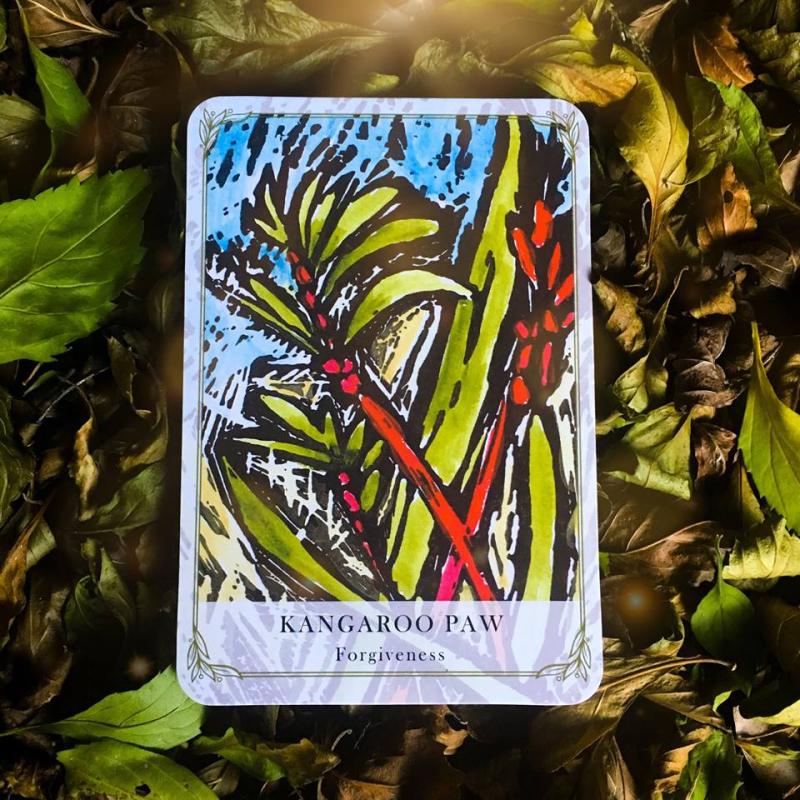 Kangaro paw webcards
