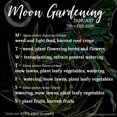 7th - 13th January 2019 Moon Gardening