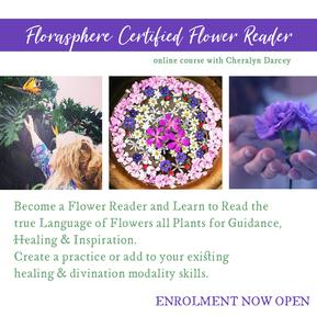 Flower reading course