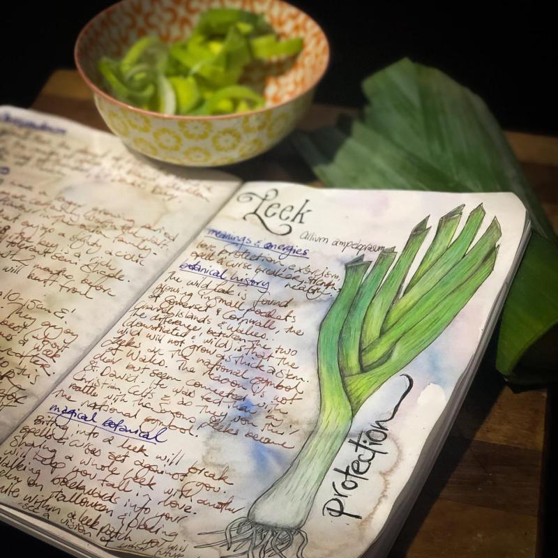 Leek journal