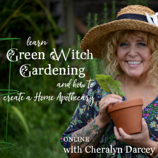 Green witch garden sq