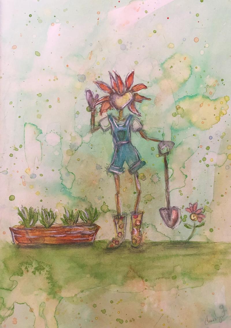 Flora Grows Cos Lettuce  Cheralyn Darcey